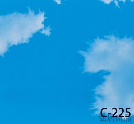 弘居色卡C-225